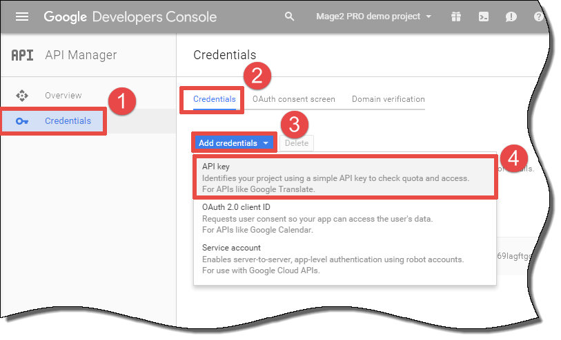 How to generate a server API key in the Google Developers Console